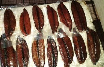 Vaccum Fish 1