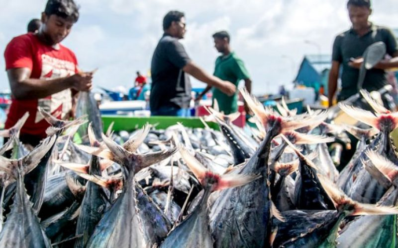 maldives-adb-covid-support
